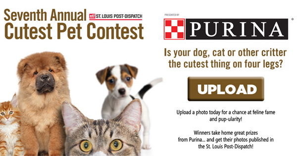 7th Annual Cutest Pet Contest presented by Purina